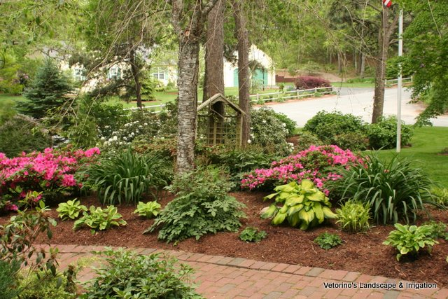 Garden Rehab 2